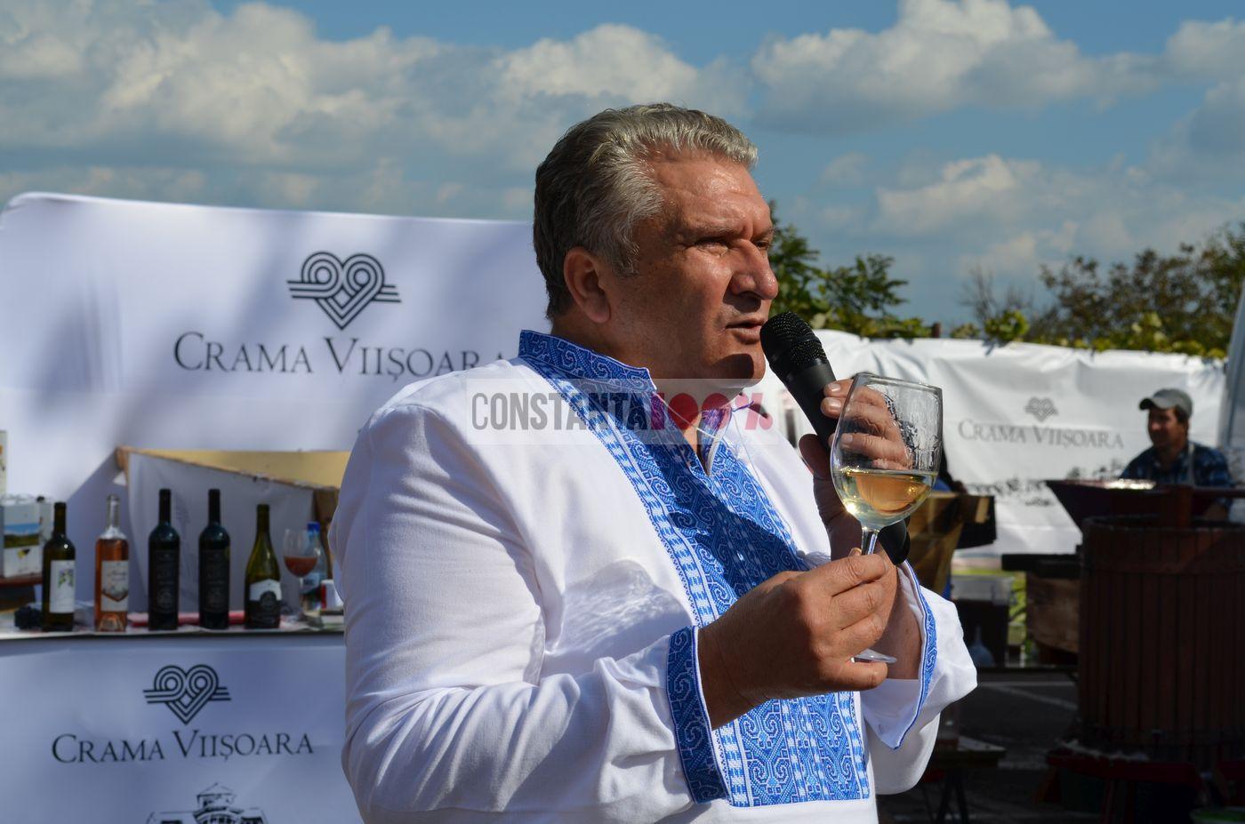 Gheorghe Albu, crama Viisoara