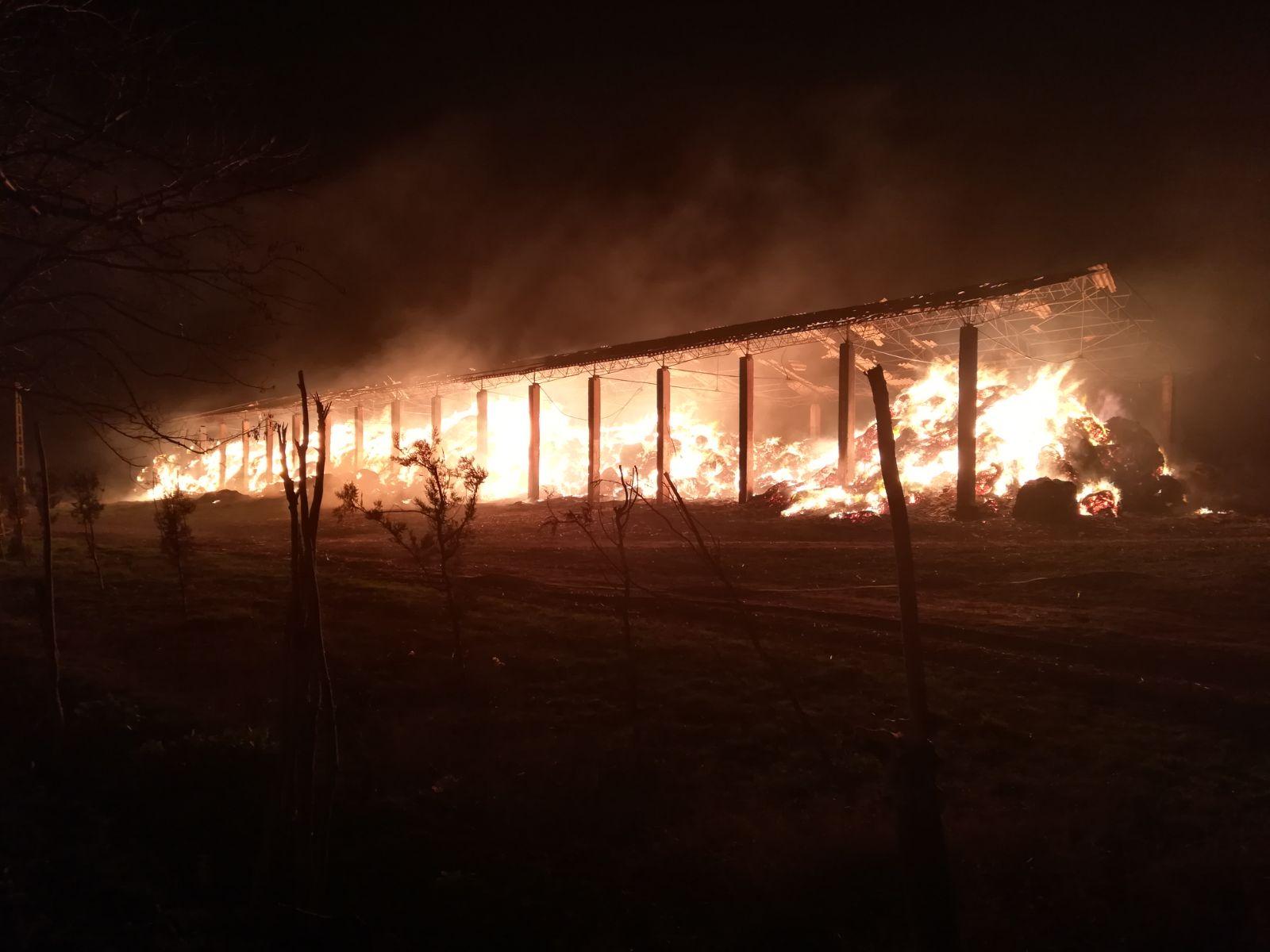 incendiu herghelie mangalia
