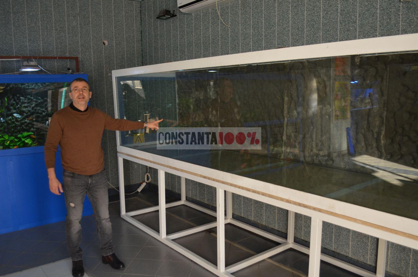 acvariu bazin nou rechini